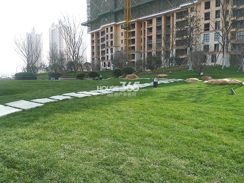 雅居乐滨江国际小区内部绿化实景图(3.11)