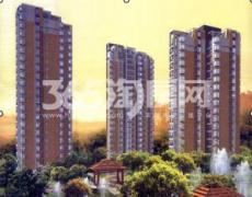 泉南国际新城