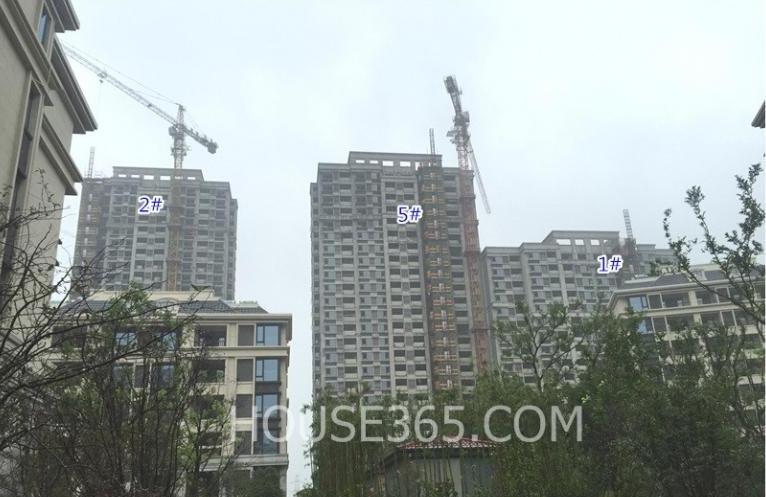 银亿东城十一街区的高层实景图(7.19)