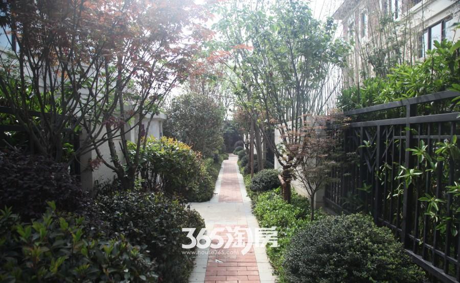 保利西山林语实景图(2015.7.29)