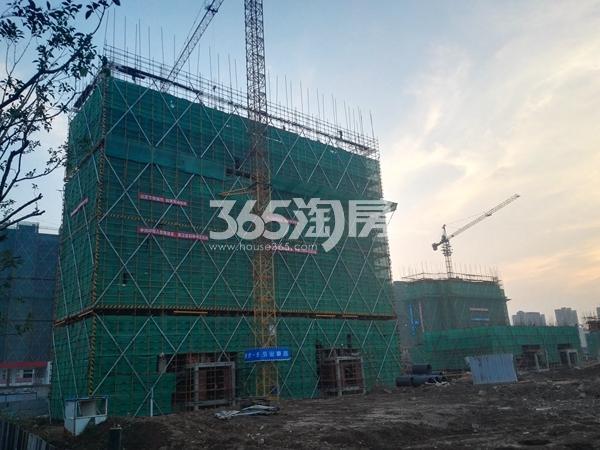 绿地工润和平壹号三期实景图1(11.10)