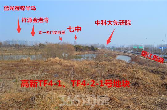 旭辉TF4-1、TF4-2-1号地块区位图