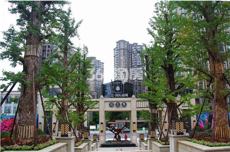 三江国际丽城阅世集实景图
