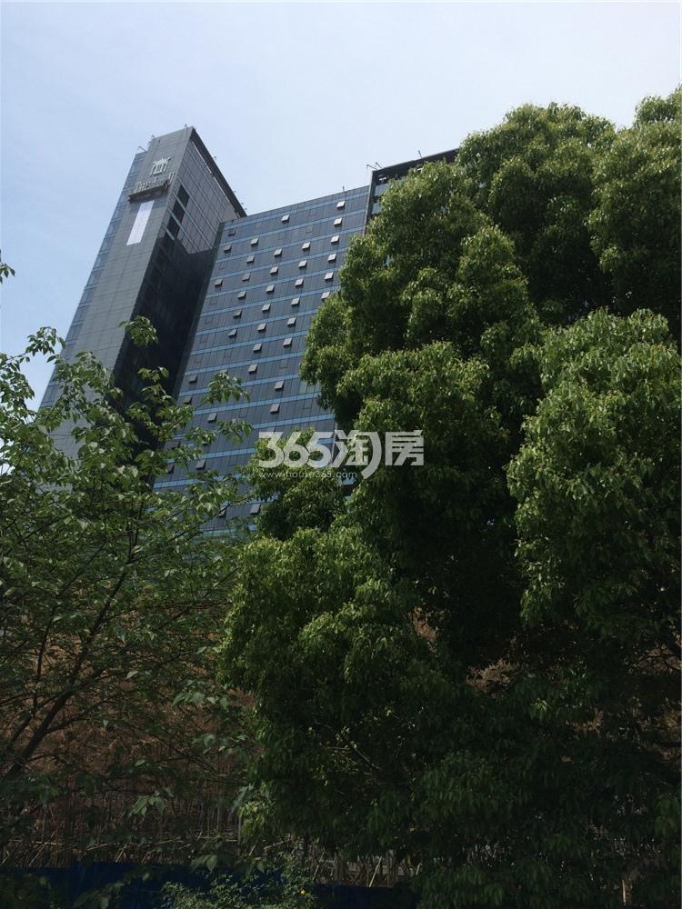 涵碧楼实景图(5.24)