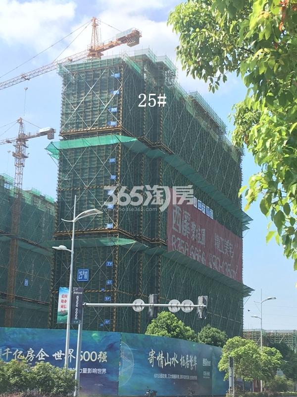 西溪碧桂园一期25#楼高层实景(2017.9)