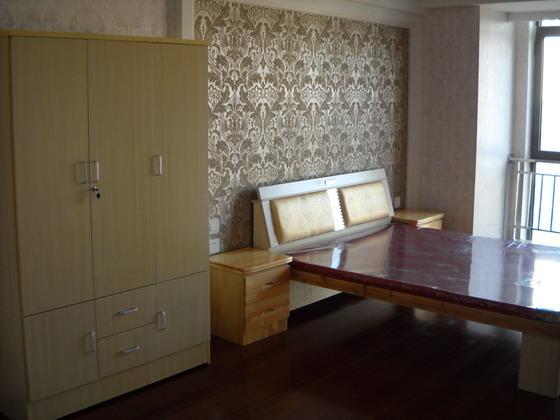 2017年最新单身公寓房屋设计图